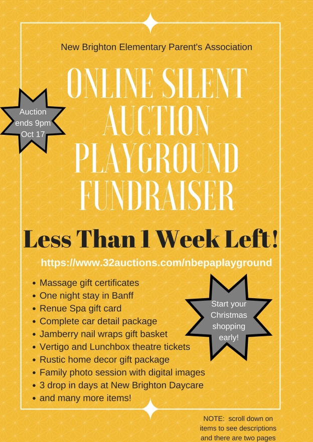 Online Silent Auction Playground Fundraiser 1 week